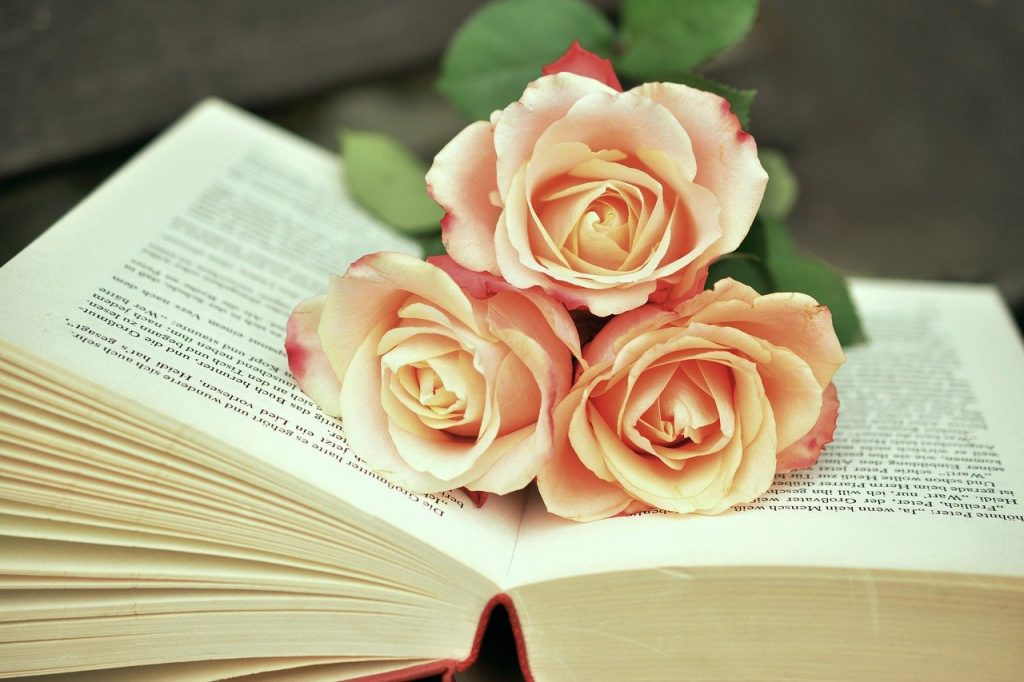 Picture of 3 pink roses on an open book.