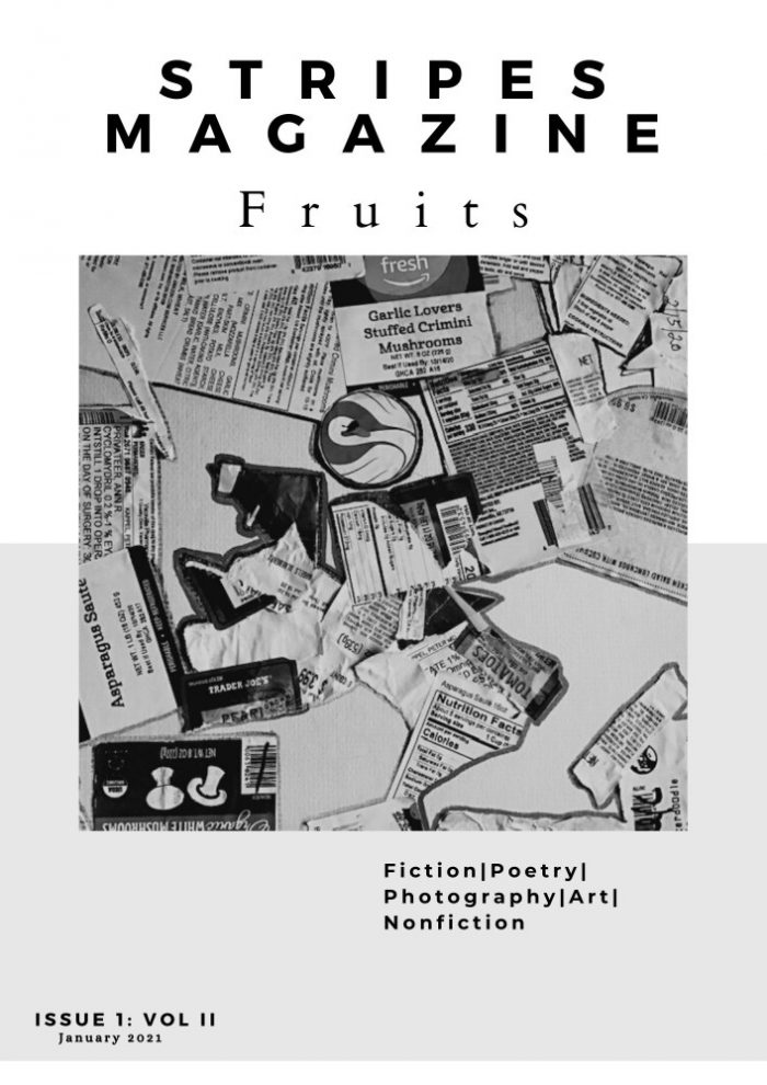 Promopalooza - Stripes Magazine