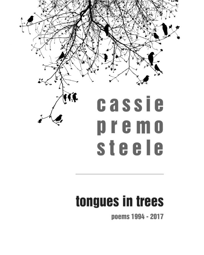 Promopalooza - Cassie Premo Steele